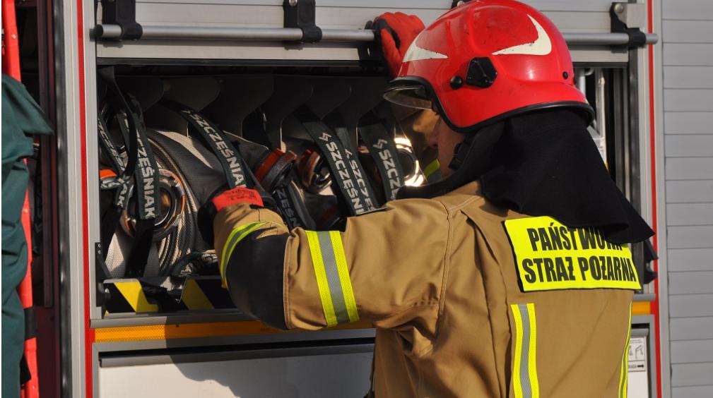 Z regionu: Strażacy gasili ogień na mieleckiej strefie  - Zdjęcie główne