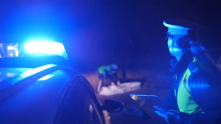 Podkarpacie: Tragedia na drodze. Mężczyzna zginął pod kołami samochodu  - Zdjęcie główne
