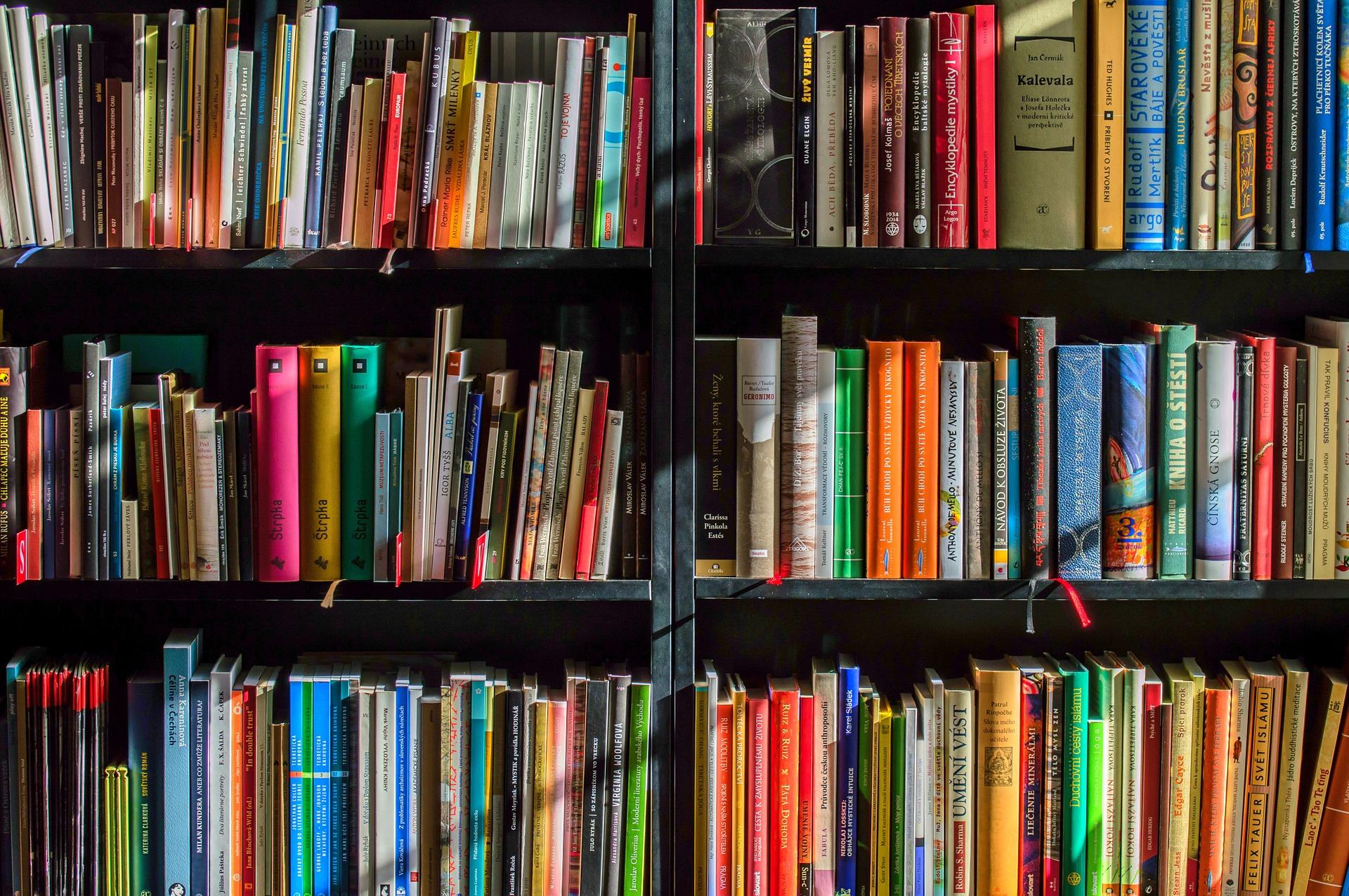 Książki za darmo dla maluchów do odebrania w bibliotece - Zdjęcie główne
