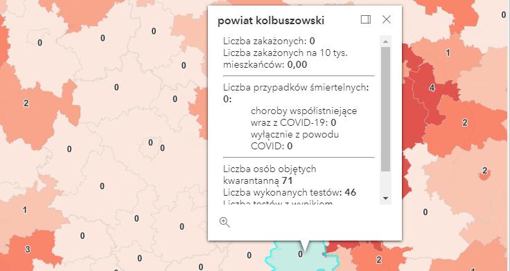 Zakażenia koronawirusem na Podkarpaciu [poniedziałek - 13 września] - Zdjęcie główne