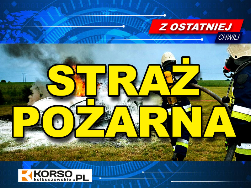 Dwa pożary w ciągu godziny. Strażacy interweniują w Leszczach i Widełce  - Zdjęcie główne