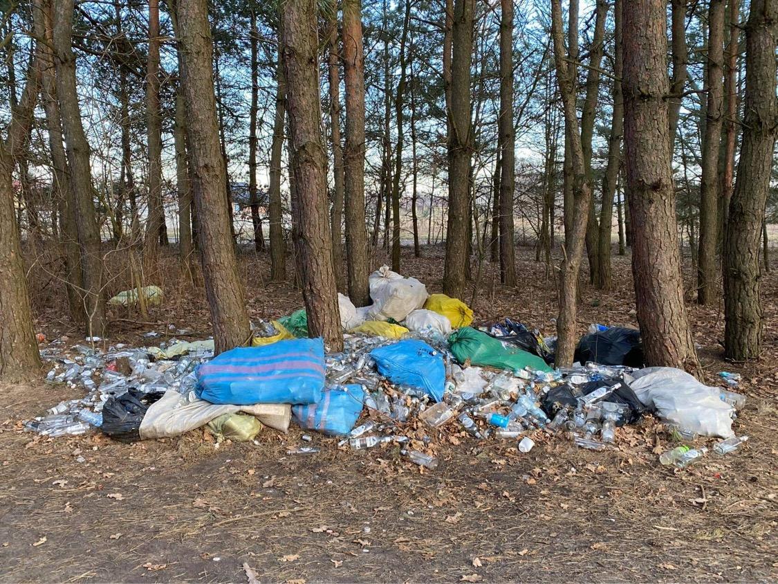 Prywatne wysypisko śmieci w Kolbuszowej Górnej [ZDJĘCIA] - Zdjęcie główne