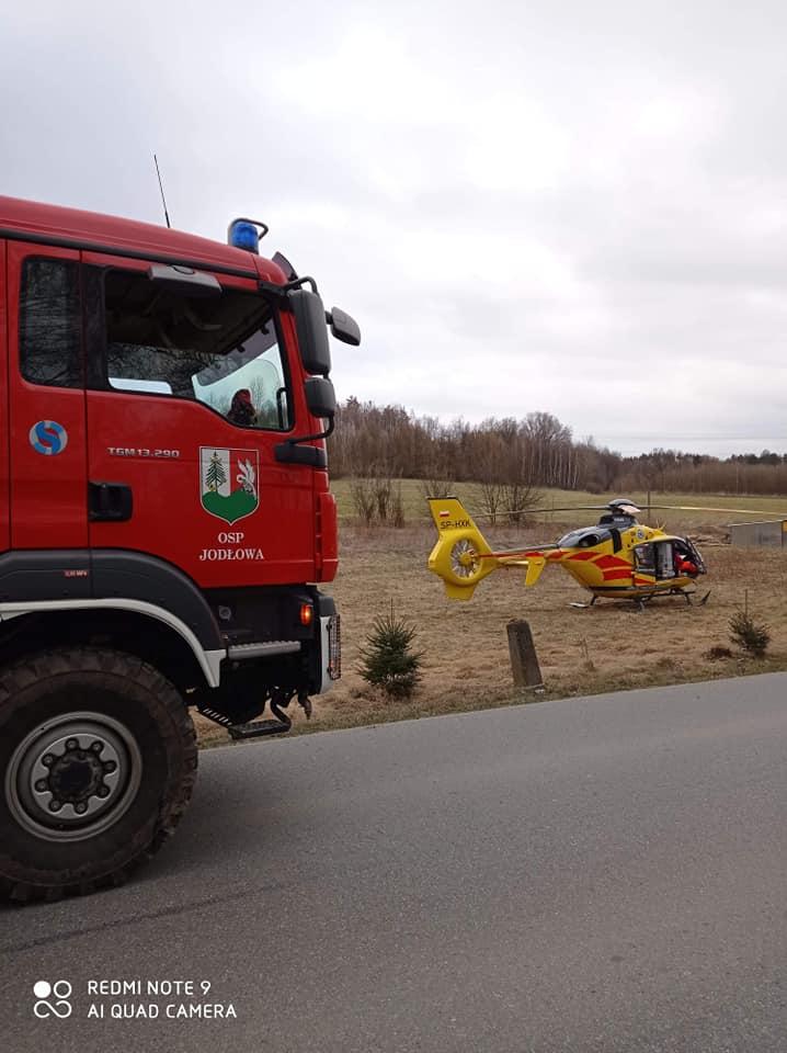 Podkarpacie: 44-latek zginął przy pracach w lesie - Zdjęcie główne