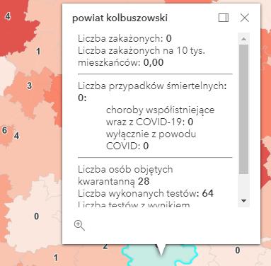 Osoby zmarłe i zakażenia na Podkarpaciu [czwartek - 27 maja] - Zdjęcie główne