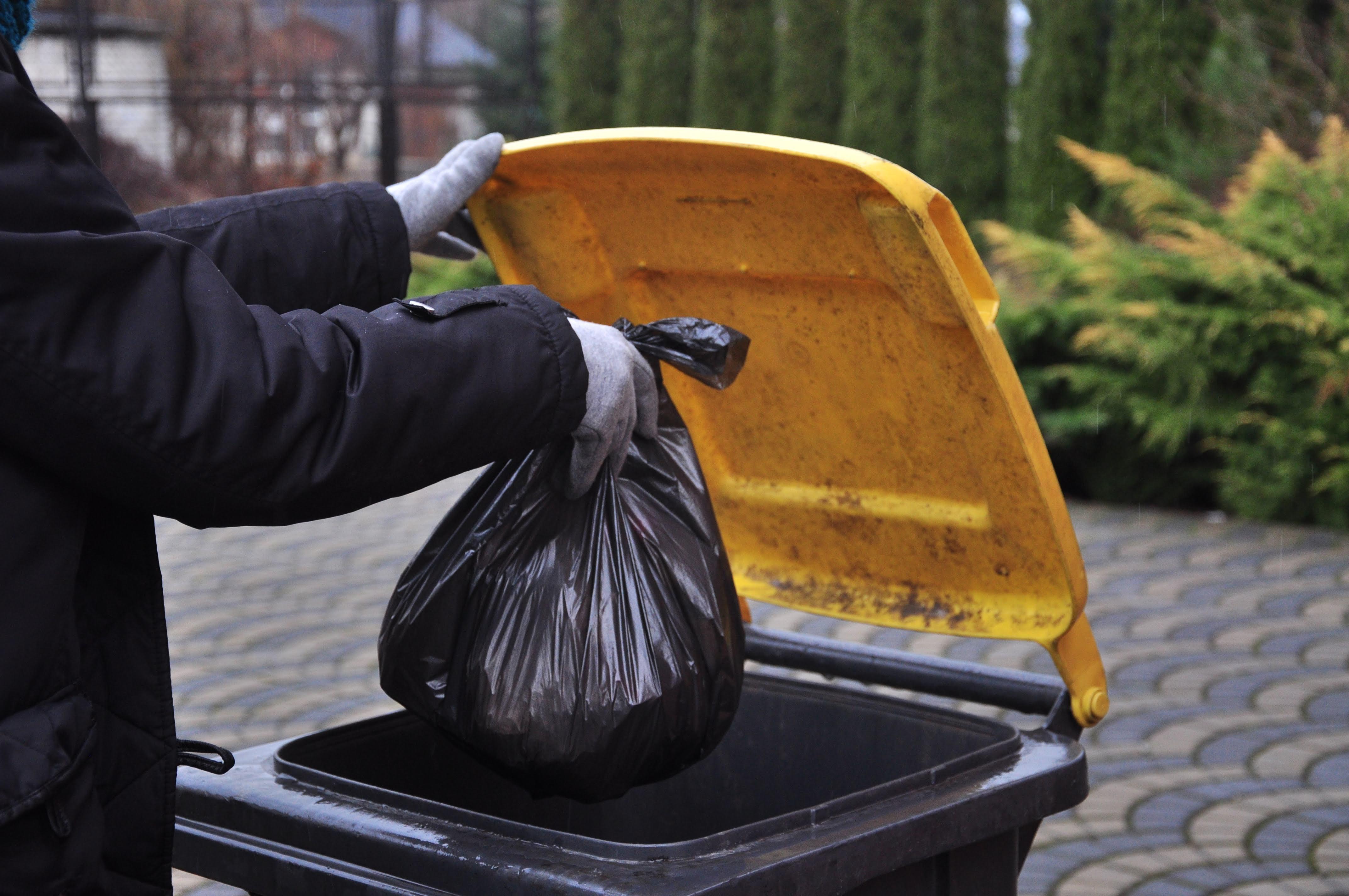 GMINA RANIŻÓW. Zabiorą śmieci, ale nie z domów  - Zdjęcie główne