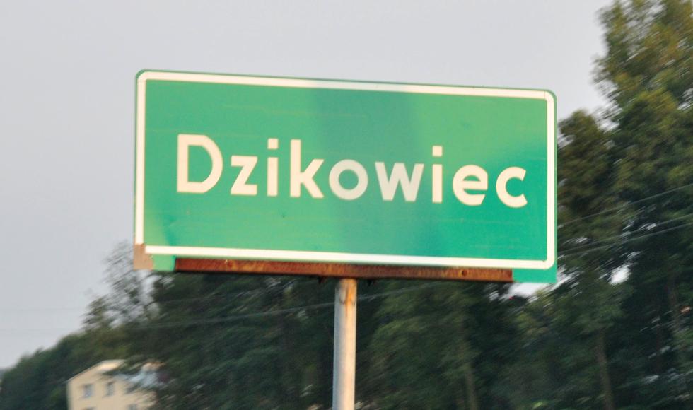 Czterech kandydatów na wójta gminy Dzikowiec [SONDA] - Zdjęcie główne