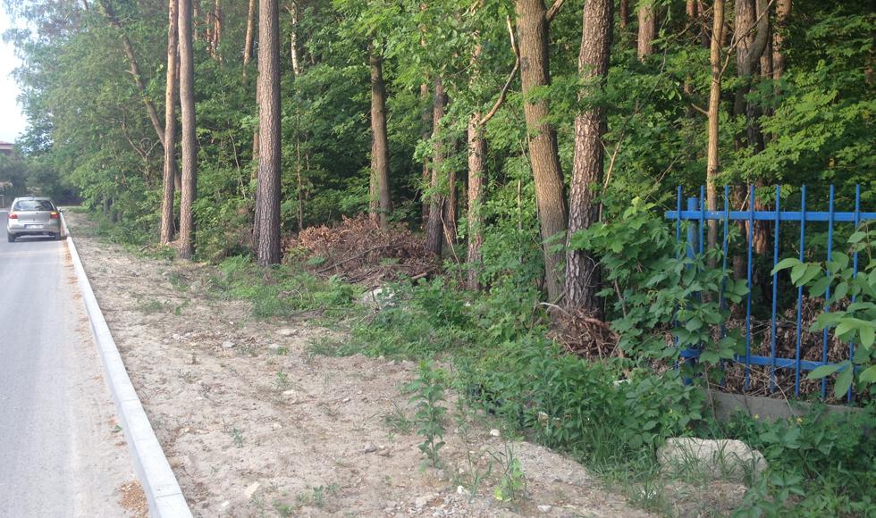 Radny Fryc interweniuje w sprawie stanu ogrodzenia stadionu sportowego w Kolbuszowej  - Zdjęcie główne