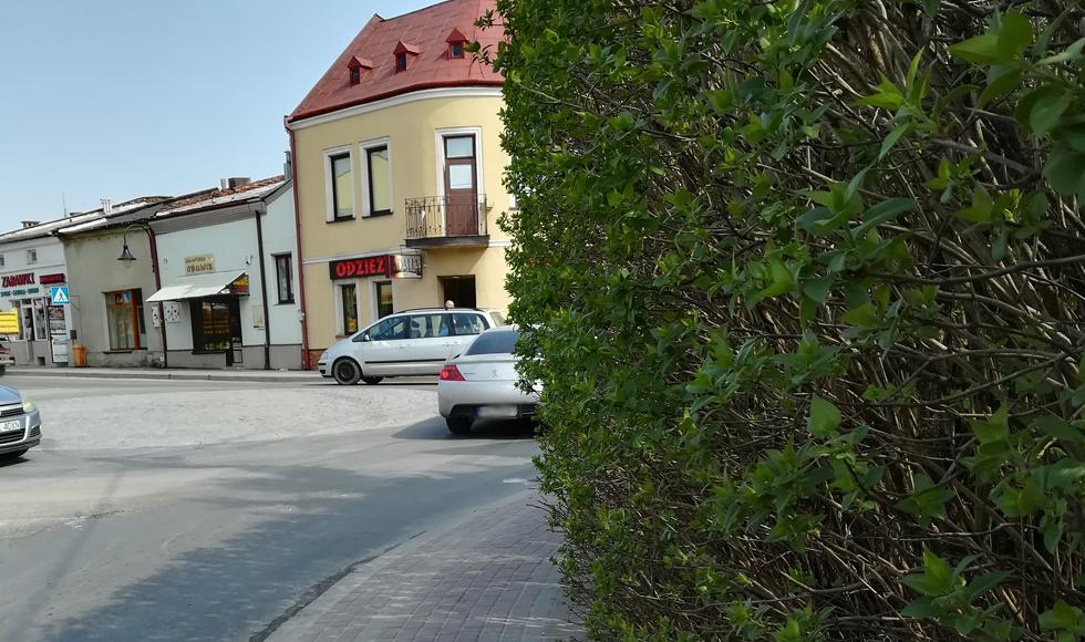 Kolbuszowa. Żywopłot w centrum miasta, który ograniczał widoczność, został już przycięty  - Zdjęcie główne
