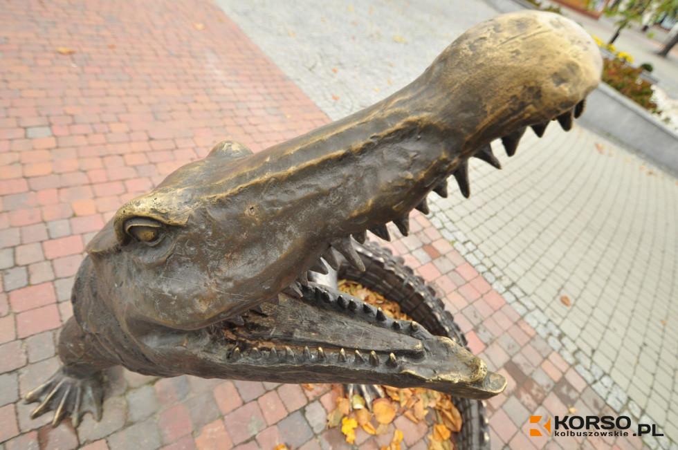 Kolejny krokodyl w Kolbuszowej  - Zdjęcie główne