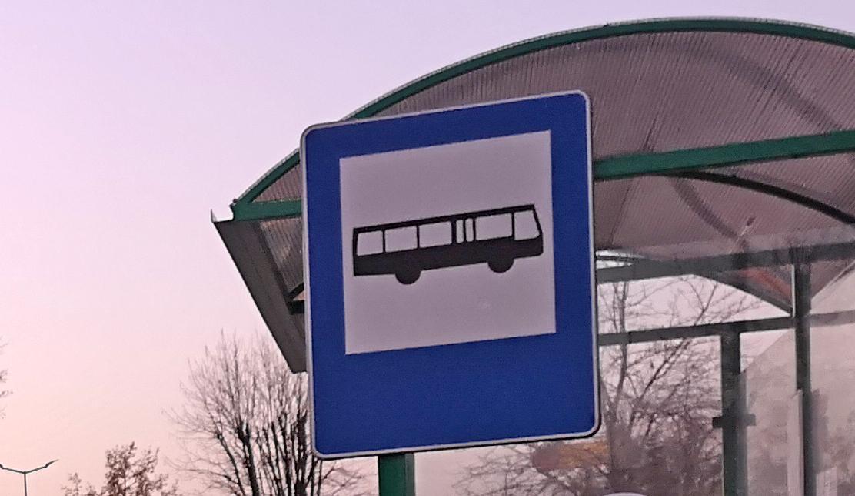 Gmina Cmolas uruchamia dwie nowe linie autobusowe [ROZKŁAD JAZDY] - Zdjęcie główne