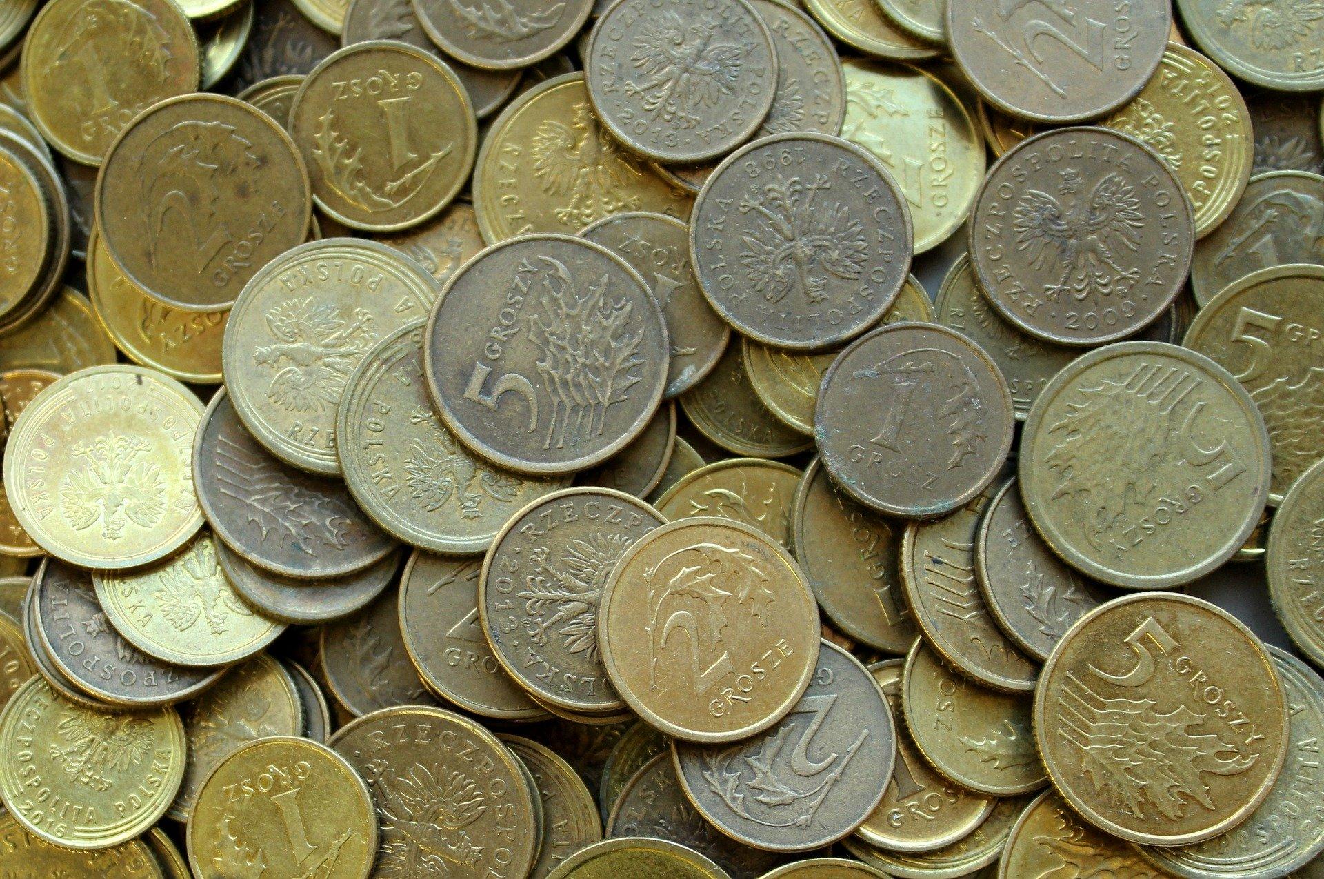 Gminy Cmolas i Raniżów nie otrzymają ani złotówki od rządu. Dlaczego?  - Zdjęcie główne