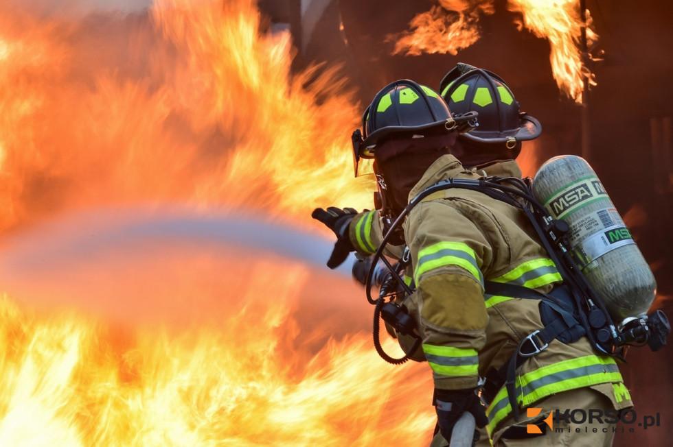 Z PODKARPACIA. 40 samochodów w ogniu. Płonie złomowisko - Zdjęcie główne