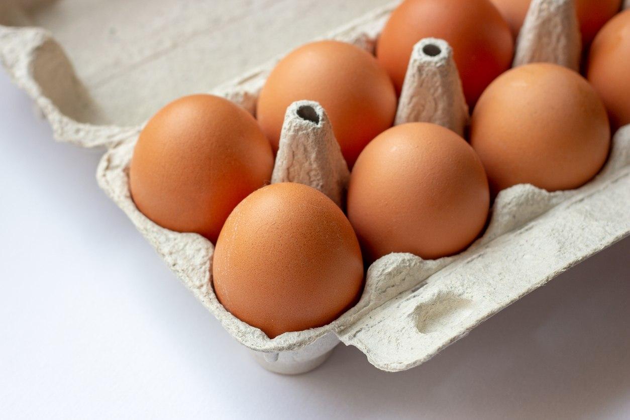 GIS ostrzega: jajka z salmonellą. Sprawdź, czy nie masz ich w lodówce - Zdjęcie główne