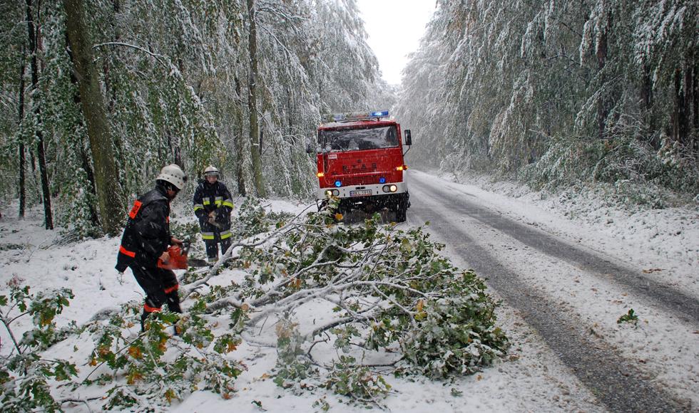 Opady śniegu zaskoczyły mieszkańców powiatu kolbuszowskiego   ZDJĘCIA   - Zdjęcie główne