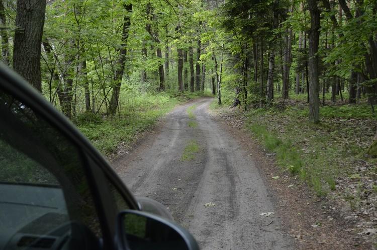 Droga bez papierów  - Zdjęcie główne