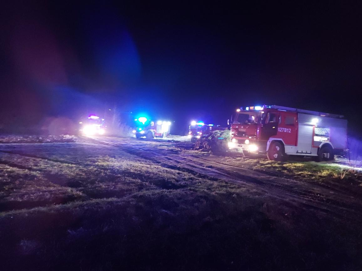Podkarpacie: Spłonęło 7 hektarów. Strażacy przyjechali na złą stronę brzegu rzeki - Zdjęcie główne