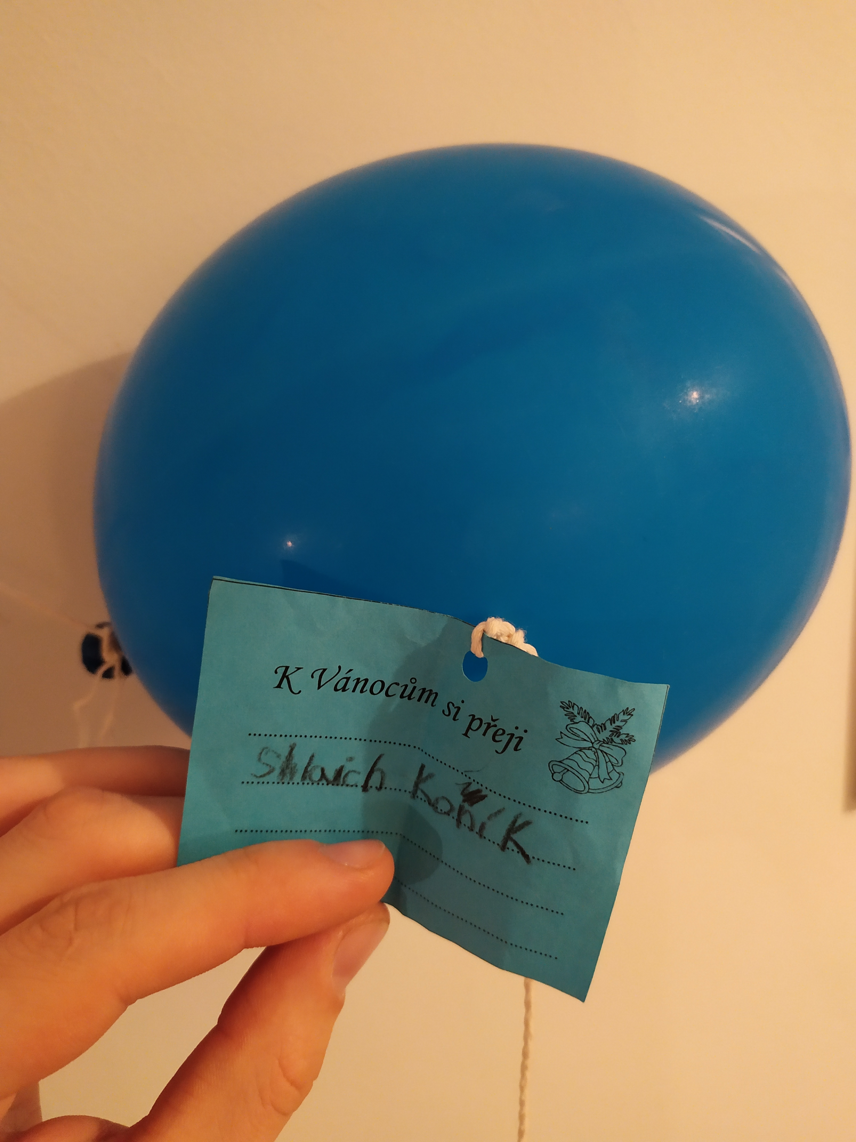 Znalazła balon z nietypową prośbą od... czeskiego dziecka - Zdjęcie główne