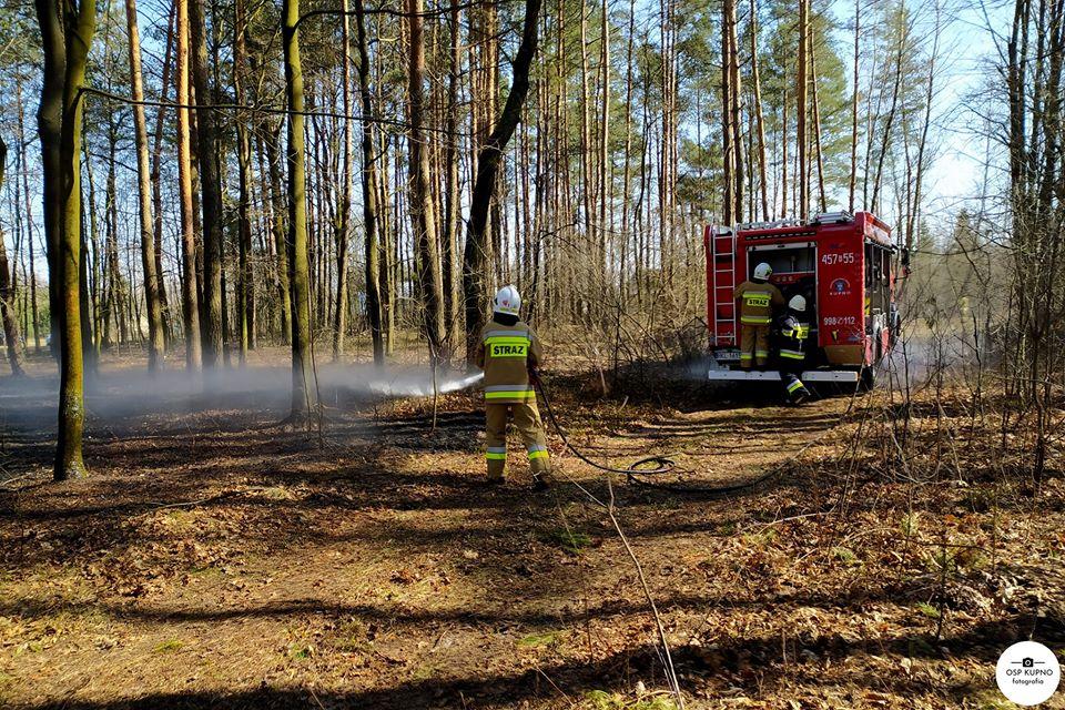 23 pożary traw w przeciągu kilku dni. Nieużytki płonęły w całym powiecie  - Zdjęcie główne