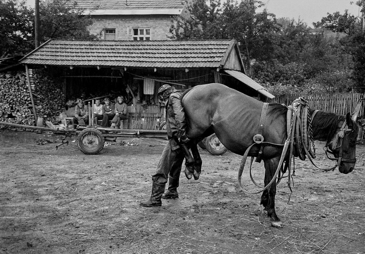 Podkarpacie: Rewelacyjne zdjęcia z Bieszczad. Zrobił je Fin [ZDJĘCIA] - Zdjęcie główne