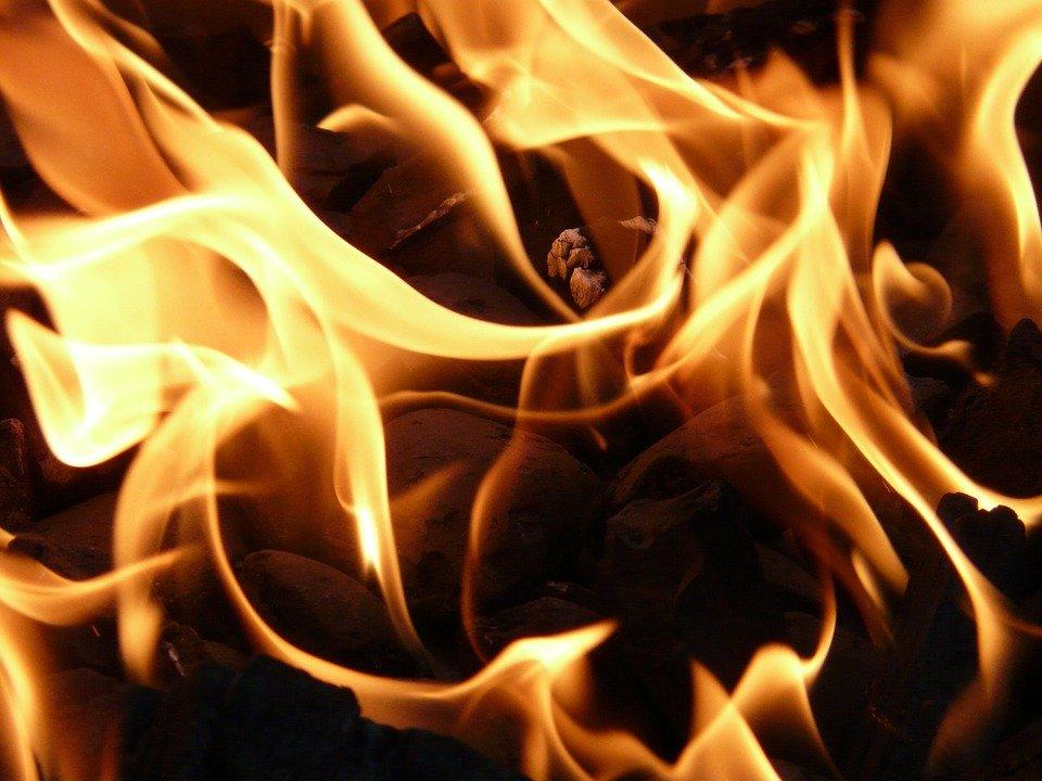 Spłonęły kolejne ule w powiecie kolbuszowskim - Zdjęcie główne