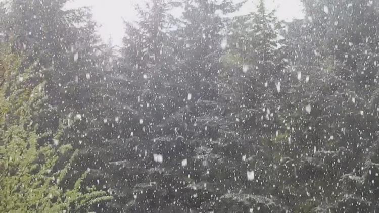 BIESZCZADY. Majowe opady śniegu | WIDEO | - Zdjęcie główne