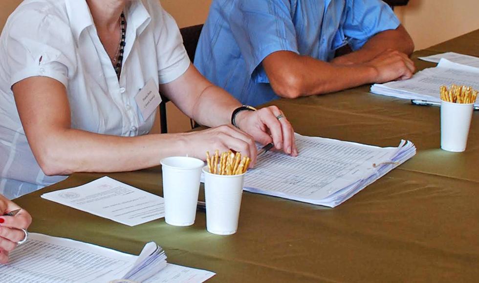 Zobacz kto będzie czuwał nad głosowaniem. Znamy składy komisji wyborczych z powiatu kolbuszowskiego - Zdjęcie główne