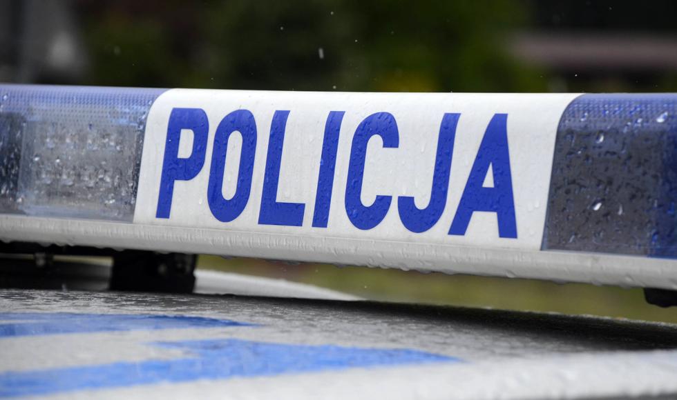 Podkarpacie: Niecodzienna interwencja policjantów  - Zdjęcie główne