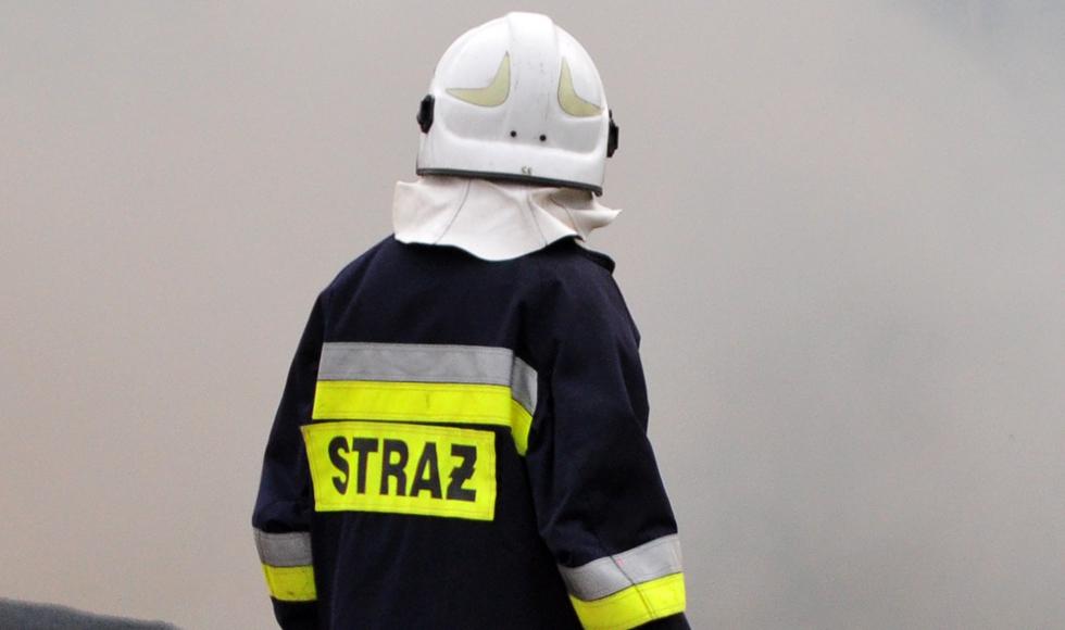 Powalone drzewo, pożary traw i zerwany dach - straż interweniuje - Zdjęcie główne