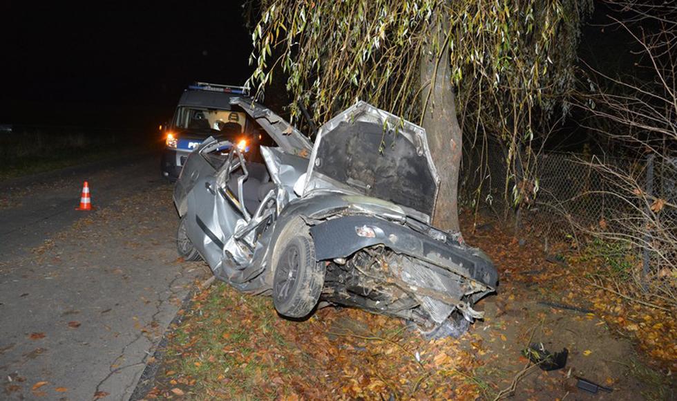 Podkarpacie. Nastolatek roztrzaskał się o drzewo [FOTO] - Zdjęcie główne