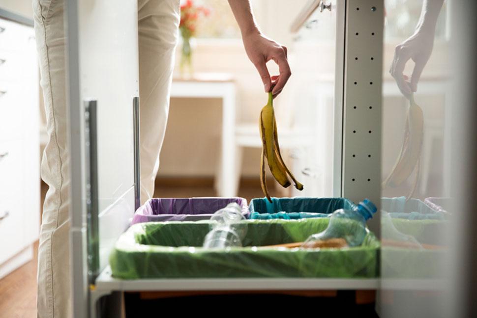 Worki kompostowalne – metoda na ekologiczne podejście do odpadów - Zdjęcie główne