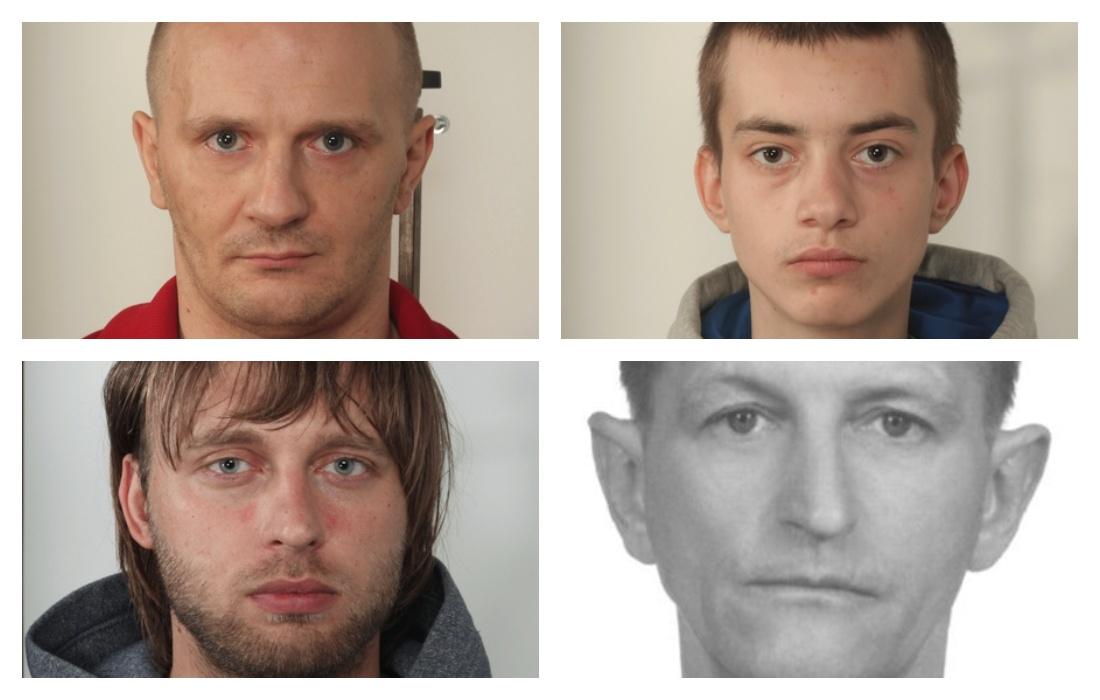 Podkarpacie: Oto złodzieje z całego naszego województwa! Są tam mieszkańcy Kolbuszowej i okolic - Zdjęcie główne