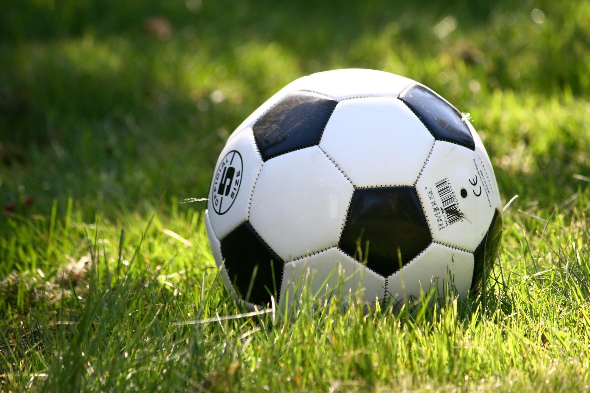 Zastrzyk gotówki dla klubów sportowych z gminy Niwiska - Zdjęcie główne