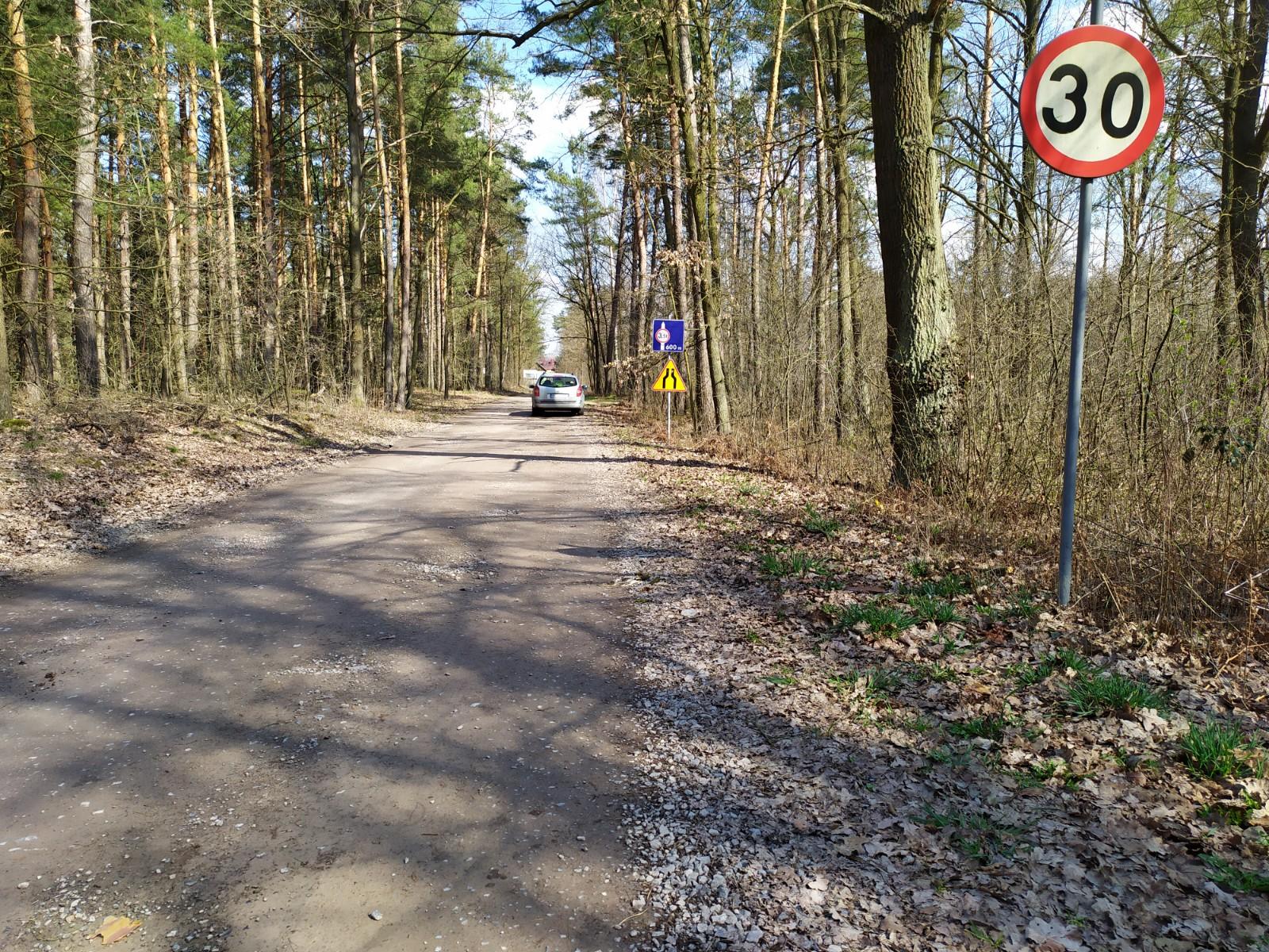 Droga między Trzęsówką a Jagodnikiem ma zyskać nowy asfalt - Zdjęcie główne