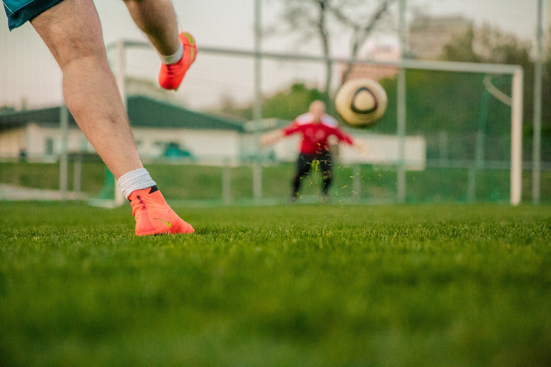 14 sierpnia: Turniej Aserto Cup - Werynia 2021 - Zdjęcie główne