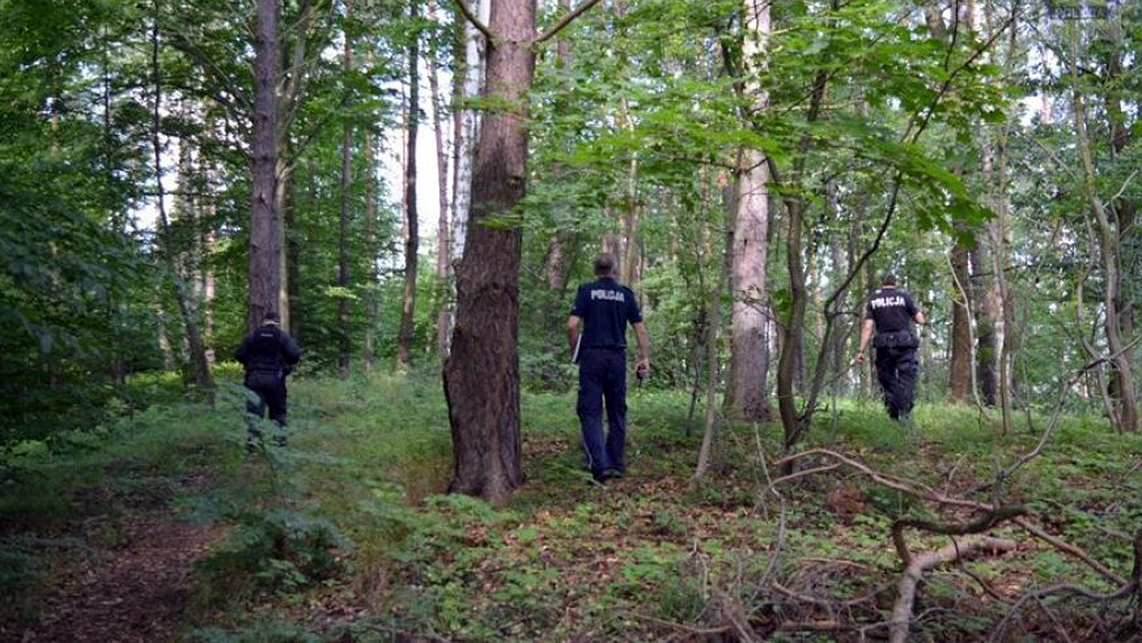 Zaginęła mieszkanka Świerczowa. Policjanci i strażacy przeczesywali lasy  - Zdjęcie główne