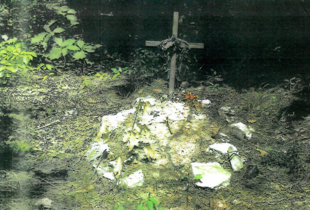 Niwiska. Szukają grobów. Chcą przeprowadzić ekshumacje [ZDJĘCIA] - Zdjęcie główne