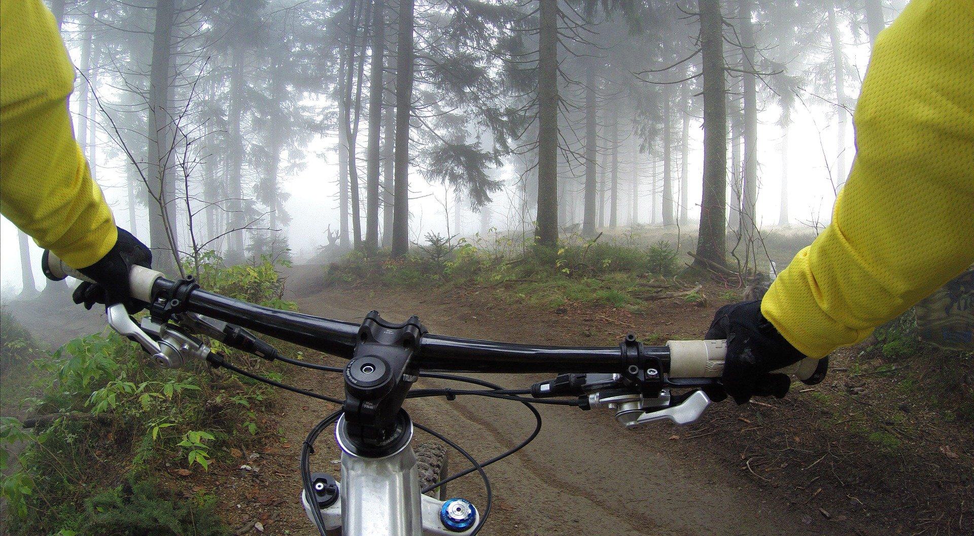 Trasy rowerowe w powiecie kolbuszowskim - Zdjęcie główne