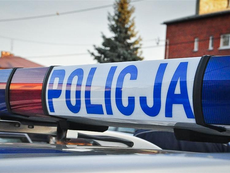 Stalowa Wola. Wypadek śmiertelny, fiat seicento zjechał z jezdni i uderzył w drzewo - Zdjęcie główne