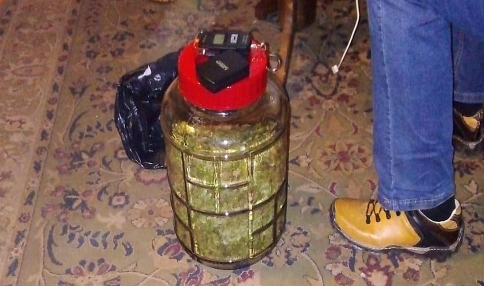 Z PODKARPACIA: Miał w domu ponad kilogram marihuany a na działce 77 krzewów konopi | ZDJĘCIA | - Zdjęcie główne