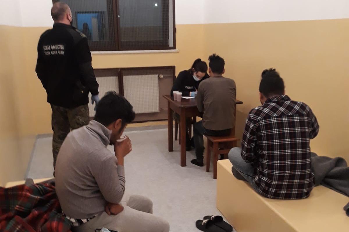 Nielegalni migranci zatrzymani w Bieszczadach - Zdjęcie główne