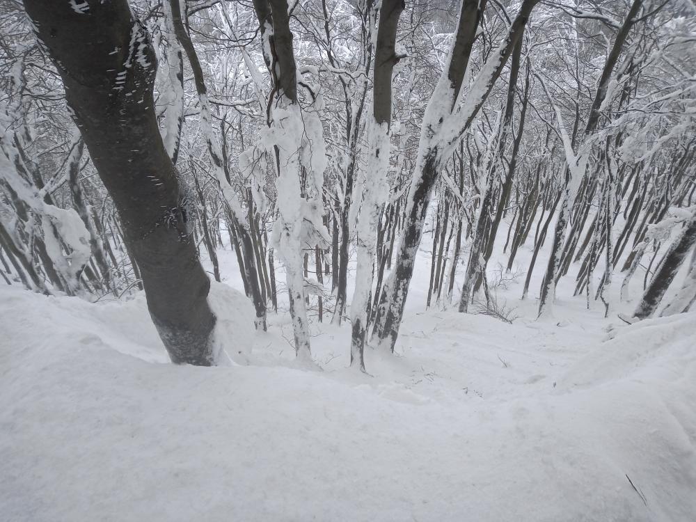 Jedziesz w góry? Leśnicy ostrzegają przed lawinami! - Zdjęcie główne