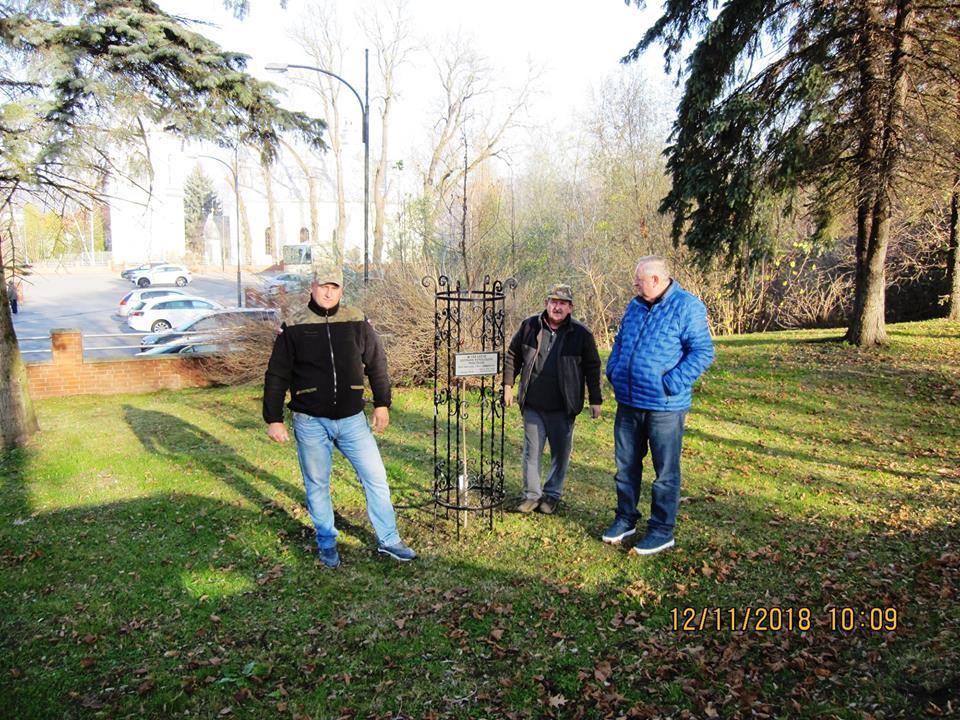 SANOK: Posadzili drzewko pomnikowe z okazji setnej rocznicy odzyskania niepodległości FOTO - Zdjęcie główne