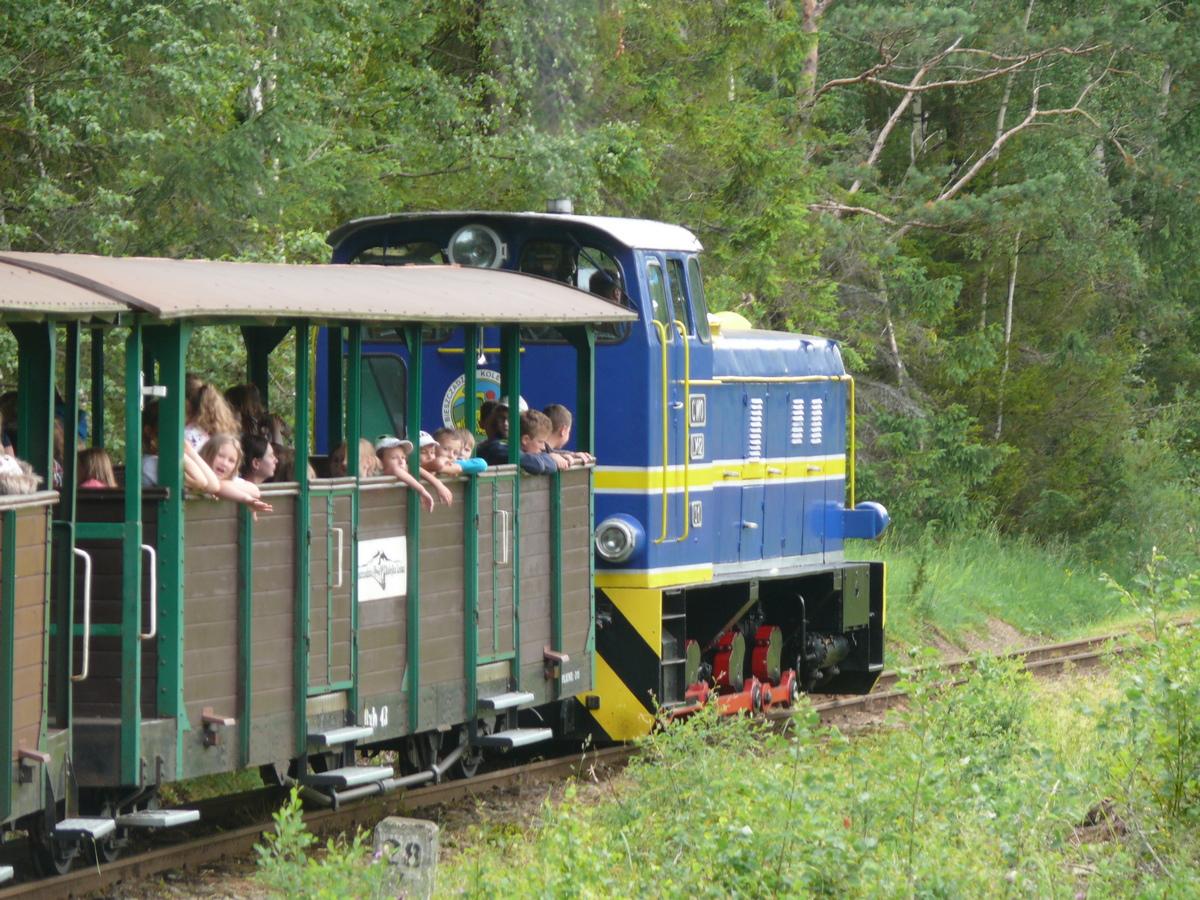 Bieszczady w obiektywie: podróż Bieszczadzką Kolejką Leśną - Zdjęcie główne