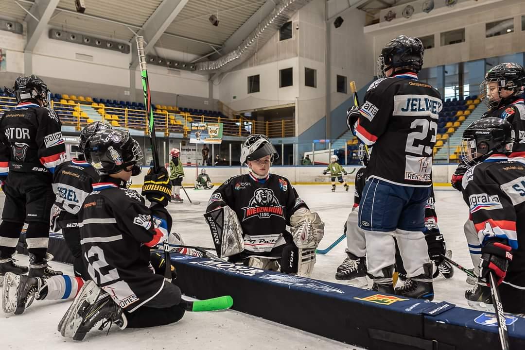 Turniej minihokeja w Krynicy i kontynuacja świetnej postawy drużyny Niedźwiadków - Zdjęcie główne