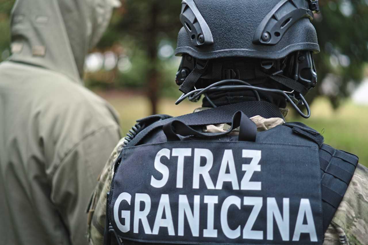 Za pomoc w zdaniu egzaminu inkasowali po 250 euro od osoby - Zdjęcie główne