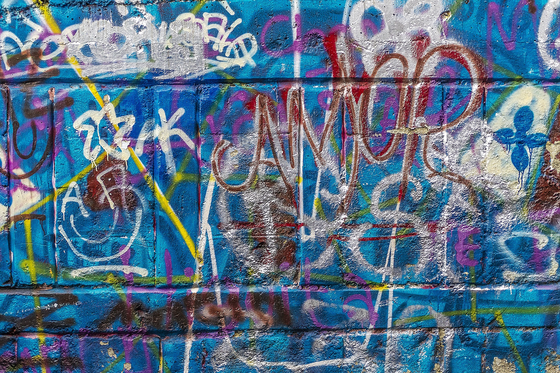 Namalowała szpecące napisy na murze Przedsiębiorstwa Wodociągów i Kanalizacji w Przemyślu! - Zdjęcie główne