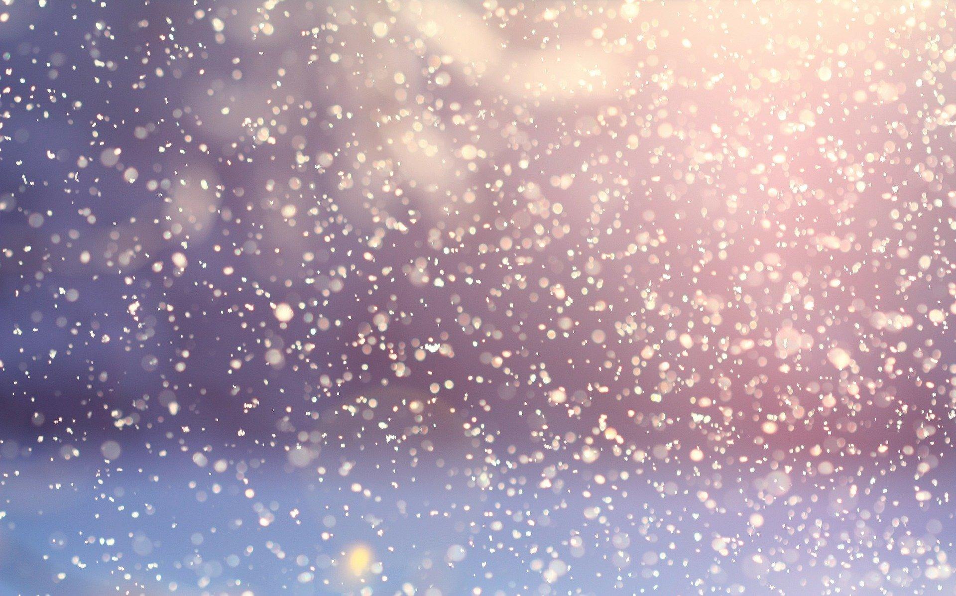ZDANIE ODRĘBNE: Pada śnieg - Zdjęcie główne