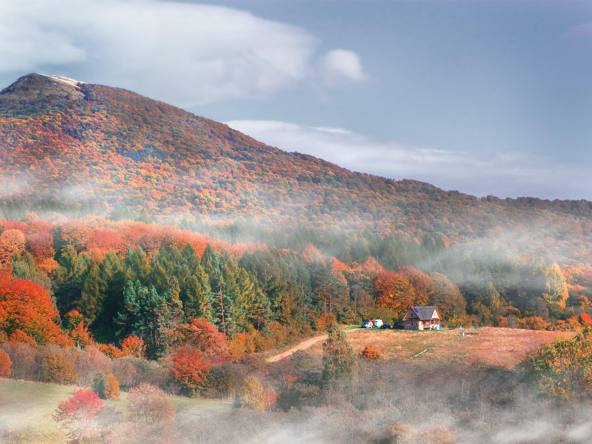 Dom w Bieszczadach? Ceny nieruchomości na terenach górskich rosną wolniej  - Zdjęcie główne