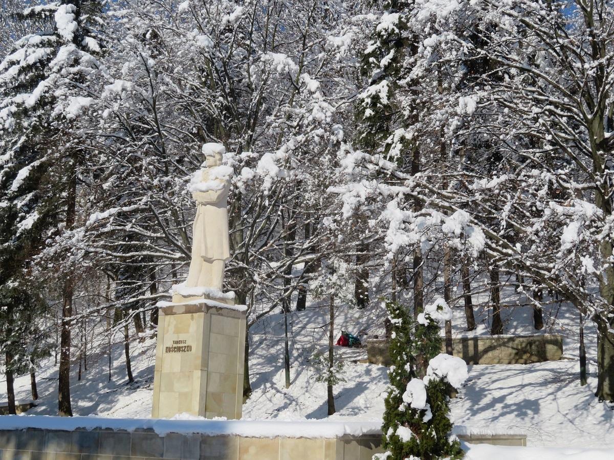 Sanok w zimowej odsłonie  - Zdjęcie główne