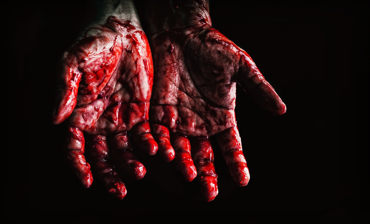 Podkarpacie. Zabił psa nożem. Bestialstwo w małej wsi  - Zdjęcie główne